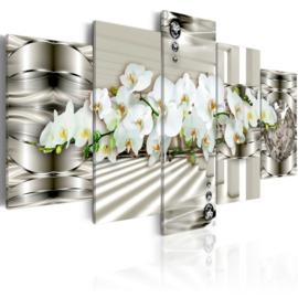 242  Modern Orchidee