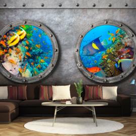 Ramen Vissen Aquarium nr 838