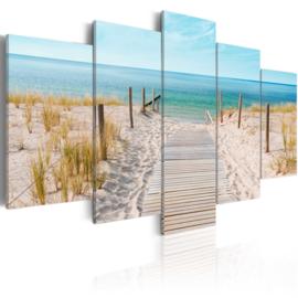 556 Noordzee Strandpad