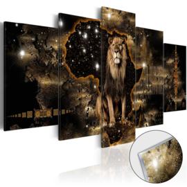 1 Leeuw Afrika Acrylglas Schilderij