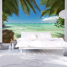 Paradijs Zee Palmboom nr 669