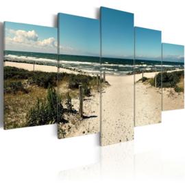 950 Noordzee Duinen Strandpad