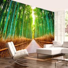 Bamboe pad nr 678