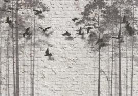 Vogels Bomen nr 163