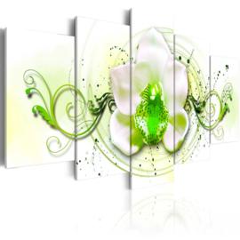 308 Orchidee Groen