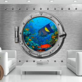 Raam Vissen Aquarium nr 837