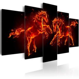 270 Paarden Vlammen