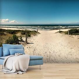 Strandpad Duinen Zee nr 446