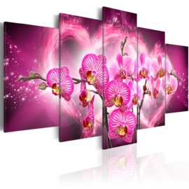 637 Roze Orchidee Hartje