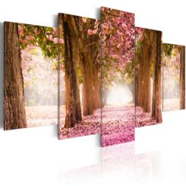 647 Roze Bloemenpad