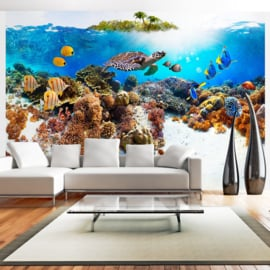 Aquarium Vissen Schilpad Zee nr 609