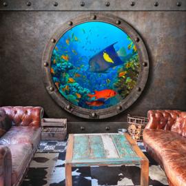 Raam Aquarium Vissen nr 836