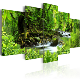 323 Natuur Waterval