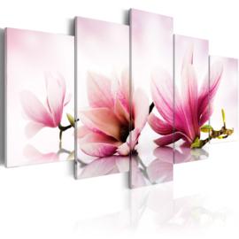 348 Magnolia Roze Bloemen
