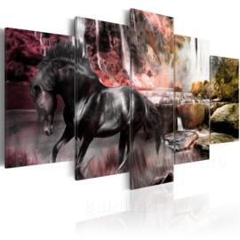 806 Paard Natuur