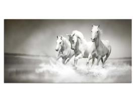 16 Paarden Glas Schilderij