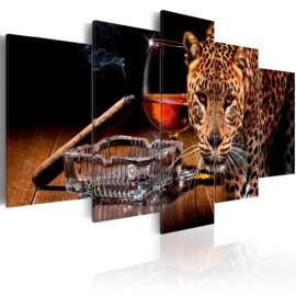 300 Luipaard Sigaar Cognac