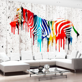 Zebra Colors nr 695