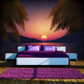 Palmbomen Sunset nr 548