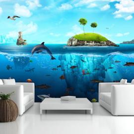 Vissen  Zee Eiland nr 507