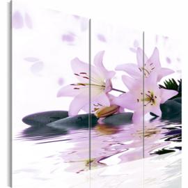 nr 9 Lelies Bloemen