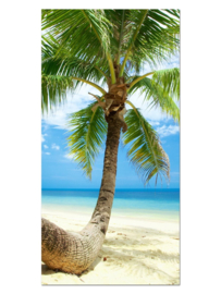 122 Paradijs Palmboom Glas Schilderij