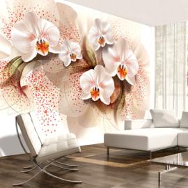 Modern Orchidee nr 650