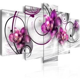 215 Modern Grijs Paars Orchidee