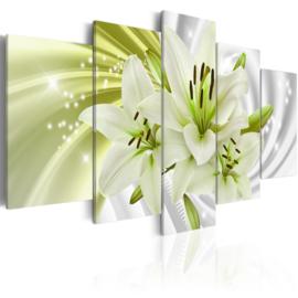 250 Modern Bloemen