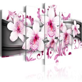 nr13 Modern Orchidee Roze Wit