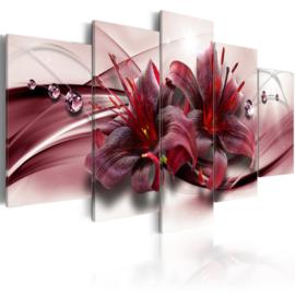 160 Modern Rood Bloemen