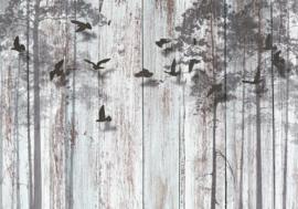 Bomen Vogels nr 162