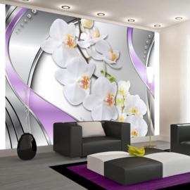Orchidee Modern nr 218