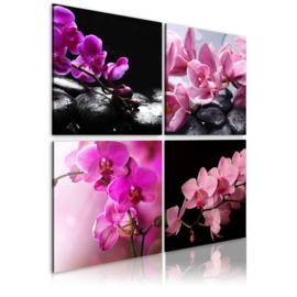 nr 9 Roze Bloemen