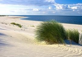 Duinen Strand Zee nr12