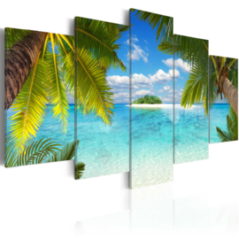 919 Paradijs Palmboom