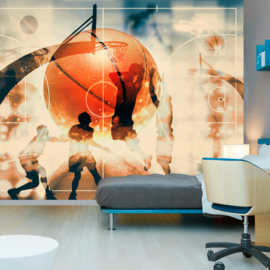 Sport Basketbal nr 490