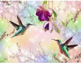 Vogels Bloemen Colors nr 186