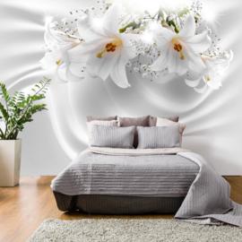 Witte Bloemen nr 368