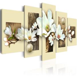 115 Magnolia Bloemen