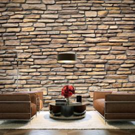 Stenen Muur nr 501