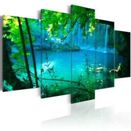 359 Paradijs Waterval Natuur