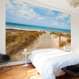 Noordzee Strandpad nr 667