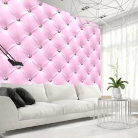 Roze Leer nr 599
