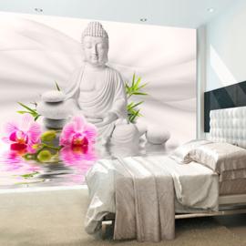 Spa Buddha nr 643