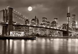 New York nr 177
