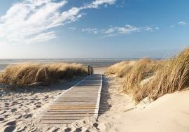 Strandpad Duinen Noordzee nr11