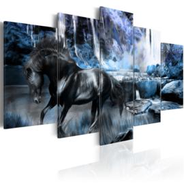 722 Paard Natuur