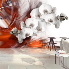 Modern Orchidee nr 749