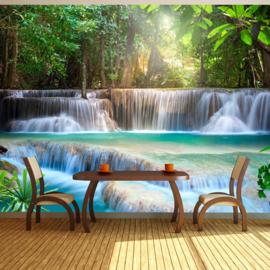 Waterval Natuur nr 443